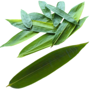 Bamboo Leaves 454g